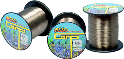 Vlasec Asso carp fishing 0,29 mm 600 m