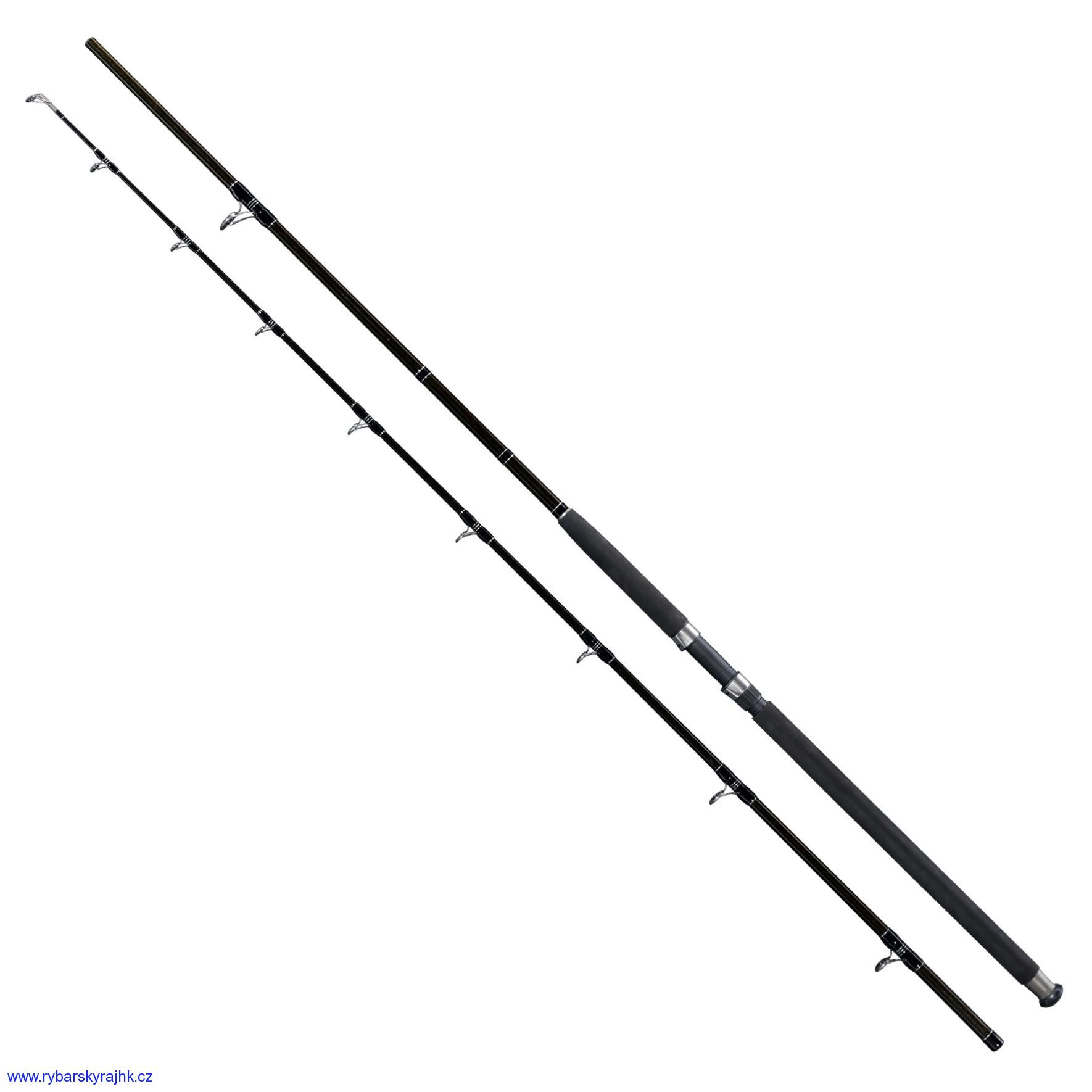 Prut Giants fishing Deluxe Catfish 2,40 m 400 g